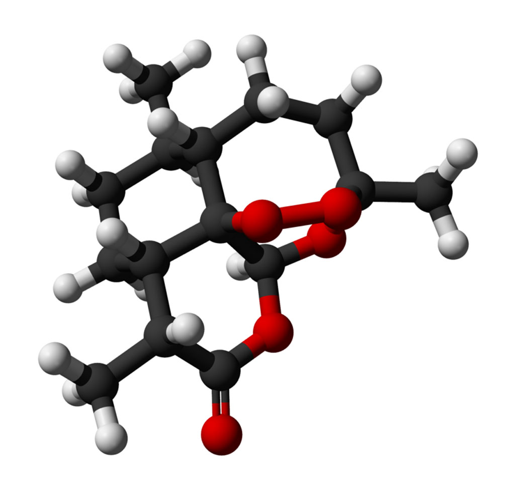 Image: A ball and stick model of artemisinin (Photo courtesy of Wikimedia Commons).