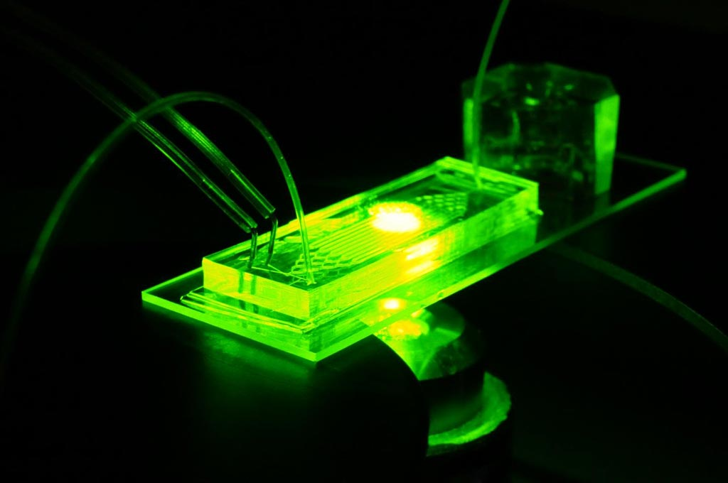 Image: The organ-on-a-chip platform seeks to recapitulate the complex microenvironment of blood vessels using miniaturized microfluidic devices (Photo courtesy of Joao Ribas, Brigham and Women\'s Hospital).