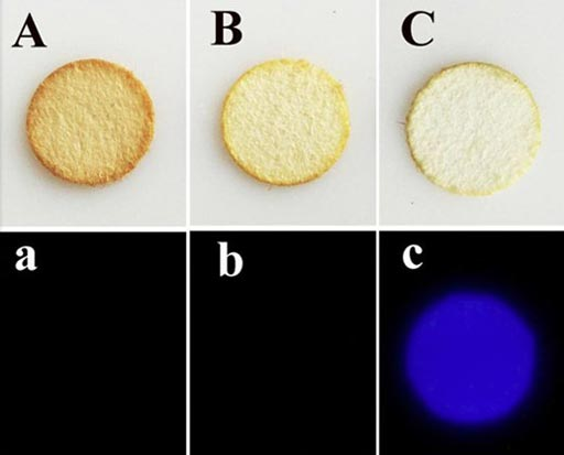 Image: Determining which stain on these paper filters (top row) is from blood (C) rather than coffee (A) or tea (B) is easier with the new, more selective artemisinin-luminol chemiluminescence test for forensic bloodstain detection (bottom row) (Photo courtesy of ACS).
