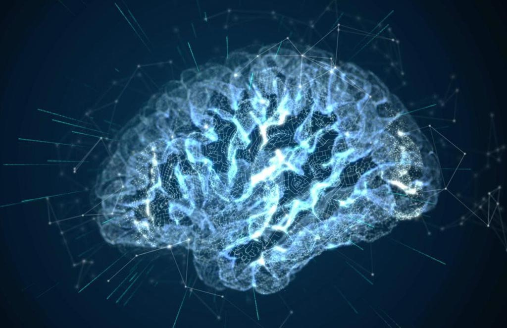 Image: Research has identified a microRNA that can protect the brain from epilepsy-related trauma and stress (Photo courtesy of Getty Images).
