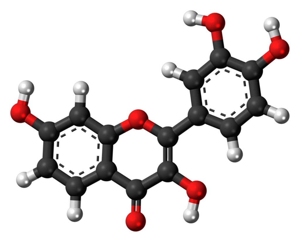 Image: A ball-and-stick model of the fisetin molecule (Photo courtesy of Wikimedia Commons).