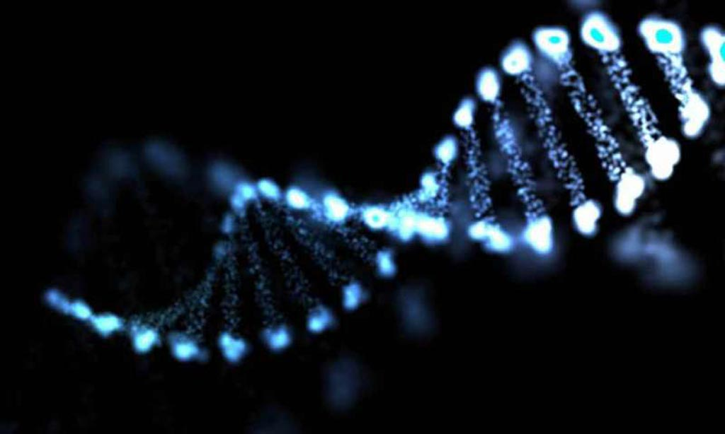 Image: New research clarifies the relationship between two genes that fuel the aggressive spread of neuroblastomas (Photo courtesy of the Mayo Clinic).
