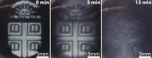 Image: A modified three-dimensional printing technique was used to create temporary microstructures that could be degraded on demand using a biocompatible chemical trigger (Photo courtesy of the Wong Laboratory, Brown University).