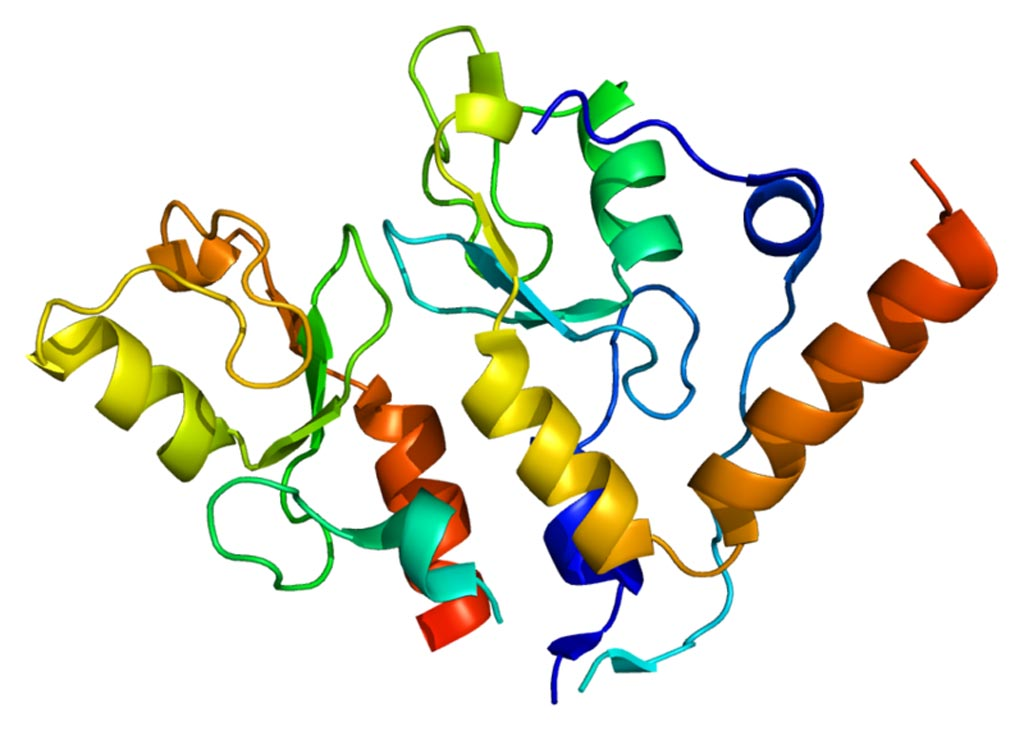 Image: The structure of the BMI1 (B lymphoma Mo-MLV insertion region 1 homolog) protein (Photo courtesy of Wikimedia Commons).