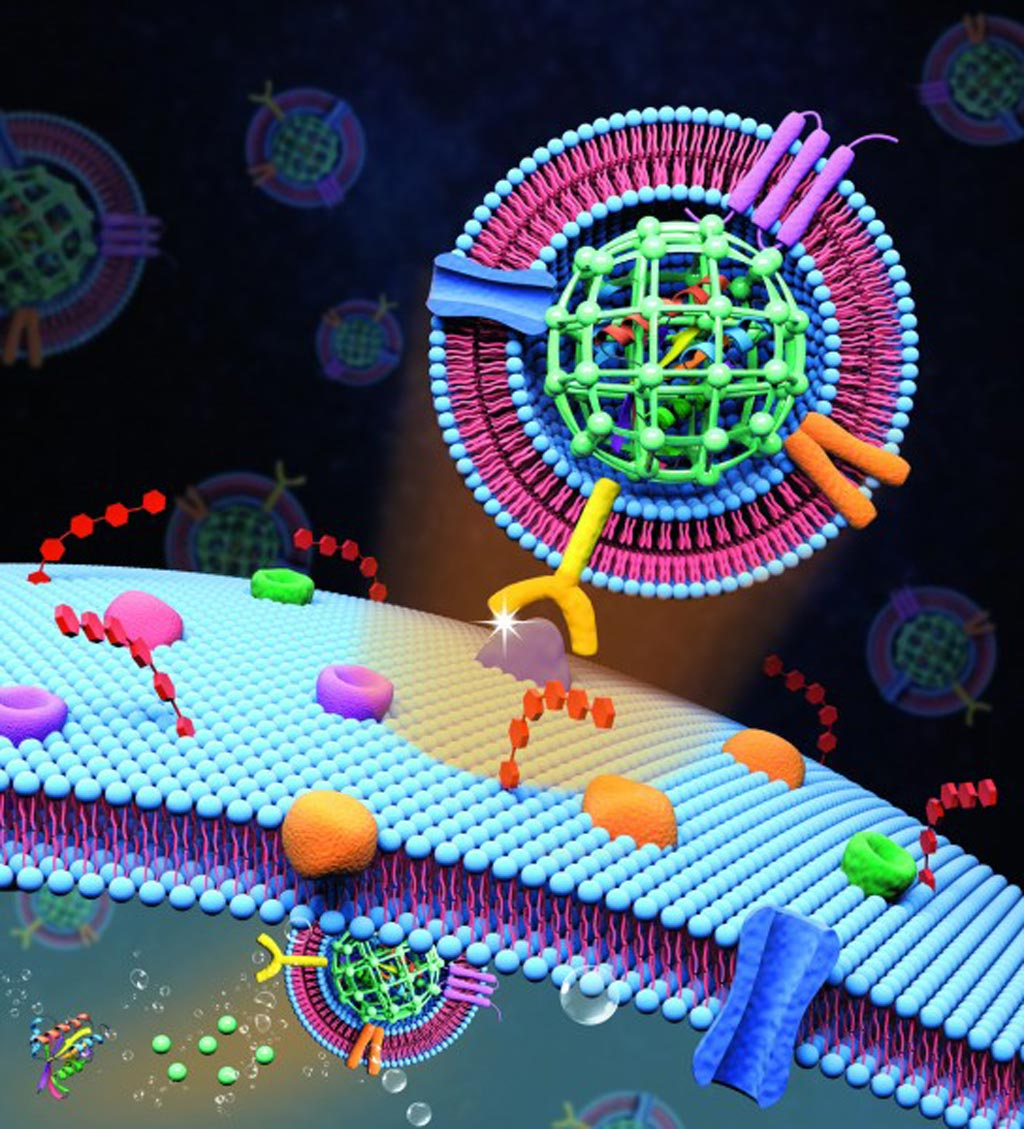 Image: Extracellular vesicle-like metal-organic framework nanoparticles are developed for the intracellular delivery of biofunctional proteins. The biomimetic nanoplatform can protect the protein cargo and overcome various biological barriers to achieve systemic delivery and autonomous release (Photo courtesy of the Zheng Laboratory, Pennsylvania State University).