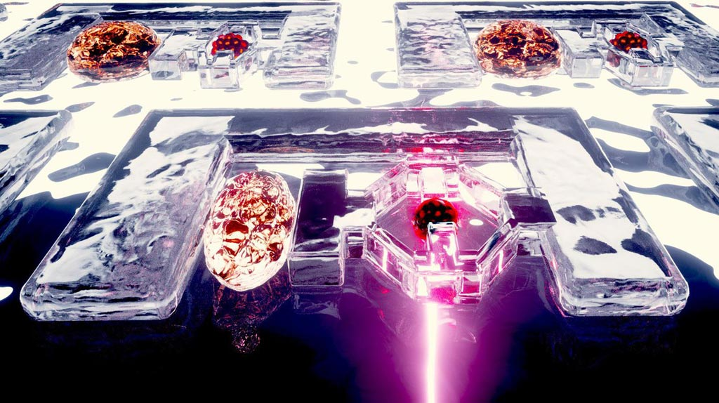 Image: Researchers have developed microscopic, hydrogel-based muscles that can manipulate and mechanically stimulate biological tissue. These soft, biocompatible robots could be used for targeted therapy and to help diagnose and prevent disease (Photo courtesy of Nebahat Yenihayat, École Polytechnique Fédérale de Lausanne).