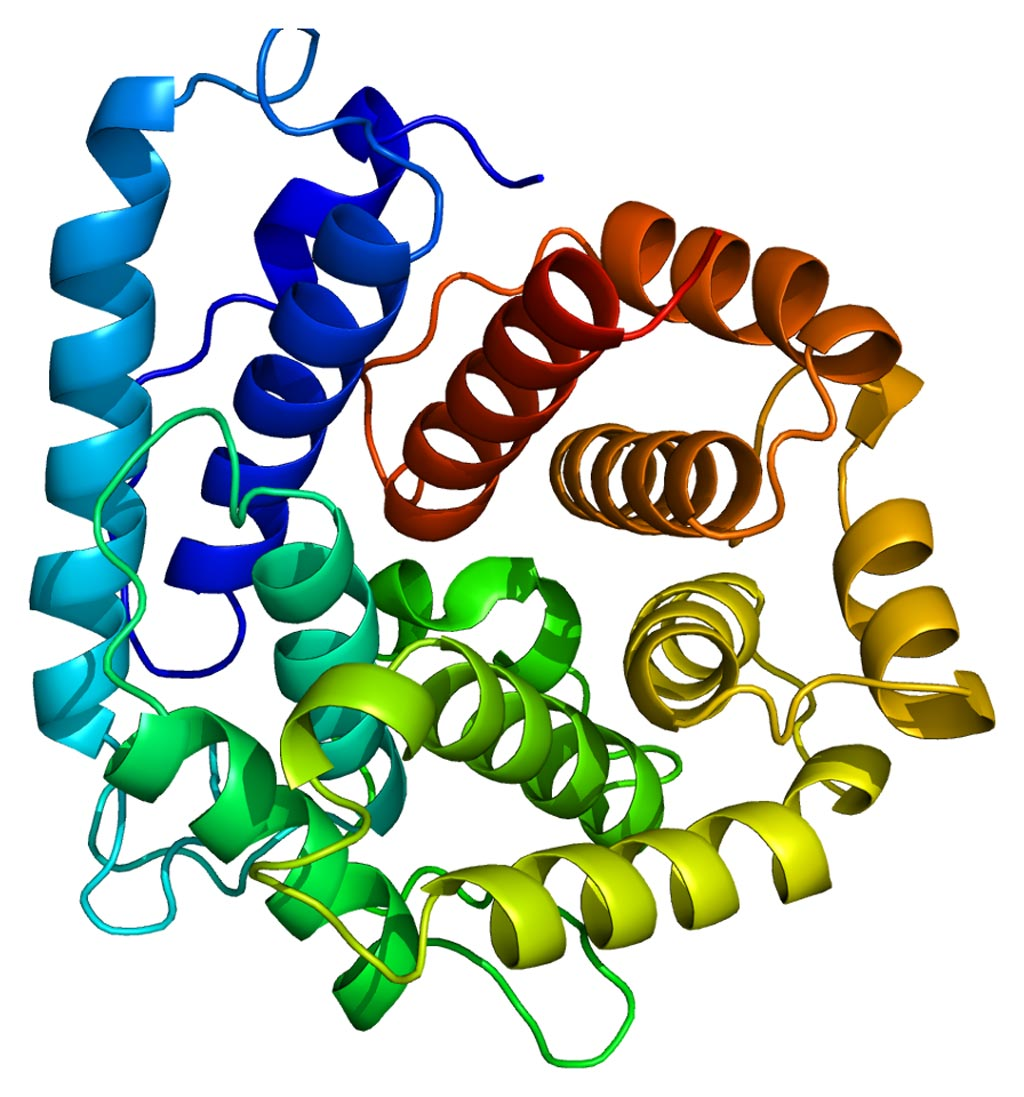 Image: The structure of the third complement (C3) protein (Photo courtesy of Wikipedia).