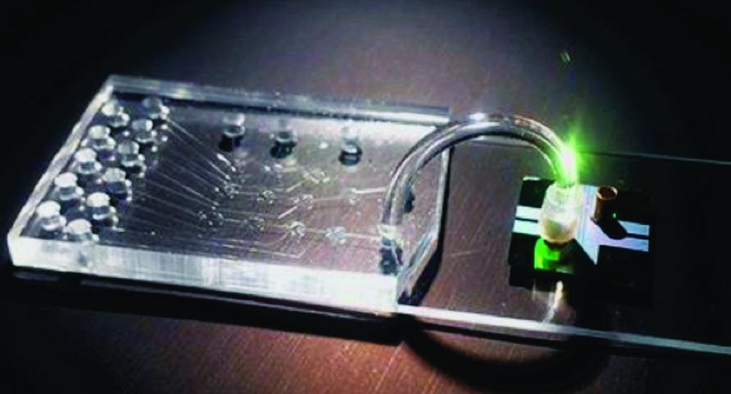 图片:用于制备样本的微流控芯片和对单个分子进行光检测的光流控芯片(图片蒙Joshua W. Parks惠赐)。