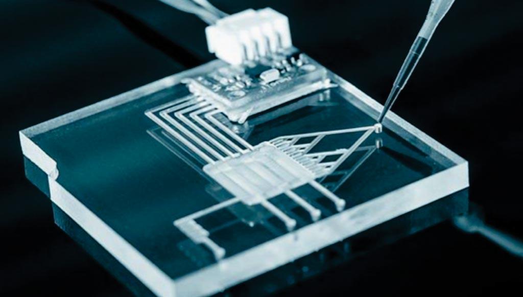 图片:日前开发成功的检测蛋白质的微流控芯片(图片蒙国立中正大学惠赐)。
