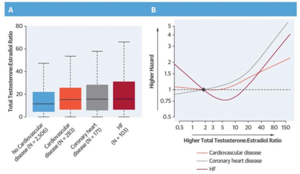 图片:绝经妇女的睾丸酮/雌二醇比率与心血管病、冠心病和心力衰竭(HF)的风险(图片蒙约翰霍普金斯大学惠赐)。