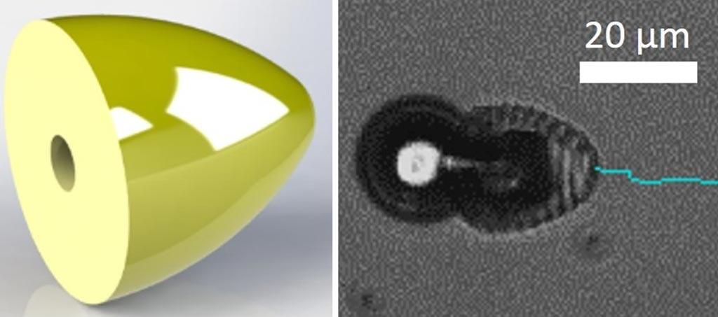 Imagen: Un microrobot en forma de bala con una cavidad interior programada, nadando en H2O2 al 5% (Fotografía cortesía del Instituto Max Planck).