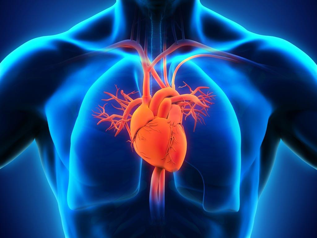 Imagen: Un nuevo estudio muestra que las fluctuaciones salvajes en la temperatura ambiente aumentan el riesgo de ataque cardíaco (Fotografía cortesía de iStock).