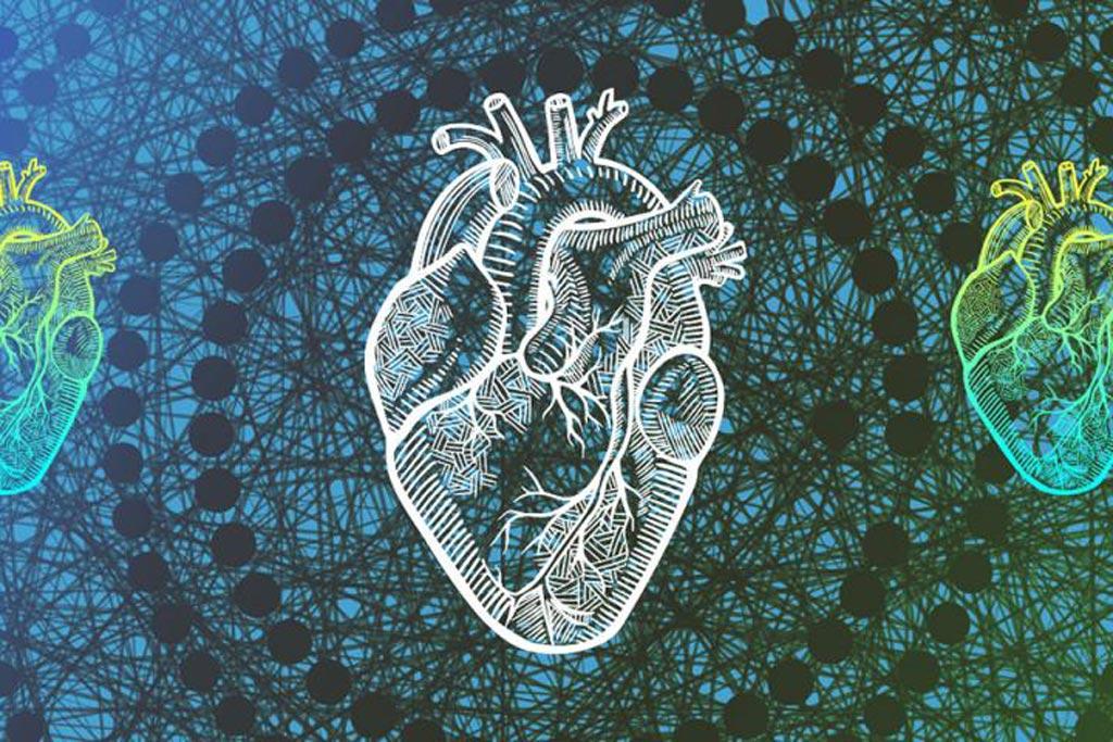 Imagen: El algoritmo, Trees of Predictors, usa el aprendizaje automático y 53 puntos de datos para predecir con mayor exactitud la esperanza de vida después de la insuficiencia cardíaca (Fotografía cortesía de UCLA).