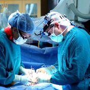 Imagen: Un estudio nuevo dice que la cirugía de fractura de cadera no se debe demorar por más de 48 horas (Fotografía cortesía de Shutterstock).