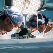 Imagen: Un estudio nuevo afirma que las válvulas aórticas de autoinjerto reducen el riesgo de mortalidad (Fotografía cortesía de Shutterstock).