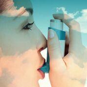 Imagen: La contaminación del aire es un contribuyente importante a la carga global de asma, según un estudio nuevo (Fotografía cortesía de 123rf.com).