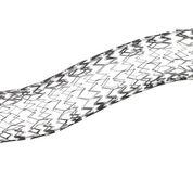Imagen: El stent Venovo fue diseñado específicamente para las arterias (Fotografía cortesía de BD).