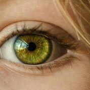 Imagen: El producto GelCORE podría ayudar a curar las lesiones corneales sin cirugía (Fotografía cortesía de Medical Xpress).