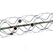 Imagen: El conjunto de electrodos implantables del sistema Stentrode (Fotografía cortesía de Synchron).