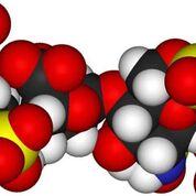 Imagen: Un nuevo estudio afirma que la sepsis hace que el azúcar ingrese en el cerebro y afecte la cognición y la memoria (Fotografía cortesía de Getty Images).