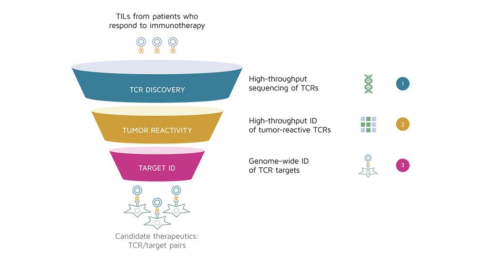 Imagen: Descubrimiento de objetivos precisos de células T en pacientes convalecientes de COVID-19 para ayudar a desarrollar vacunas y diagnósticos (Fotografía cortesía de TScan Therapeutics)