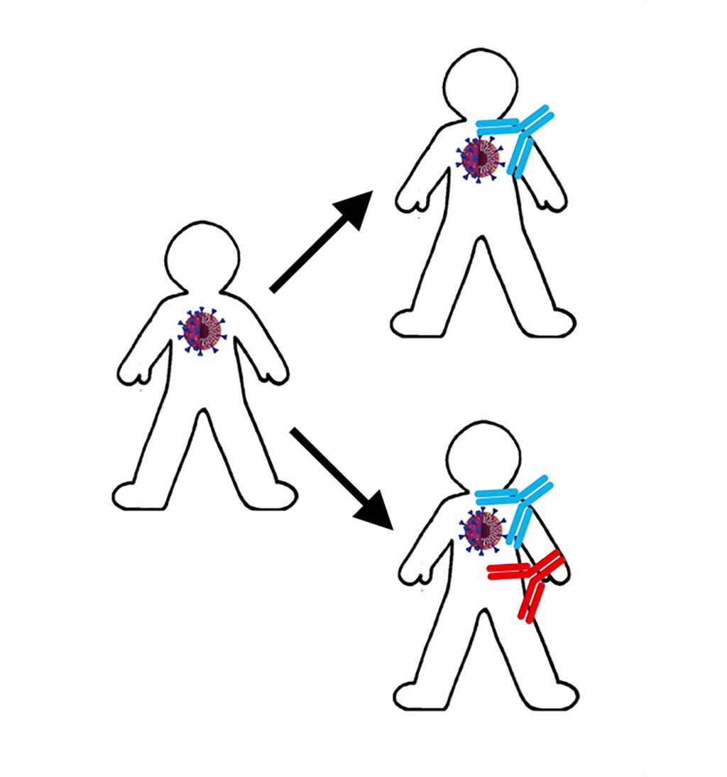 Imagen: Un análisis de sangre para detectar la presencia de anticuerpos autoinmunes podría ayudar a identificar a los pacientes con COVID-19 en riesgo de desarrollar una enfermedad grave (Fotografía cortesía de Life Science Alliance)