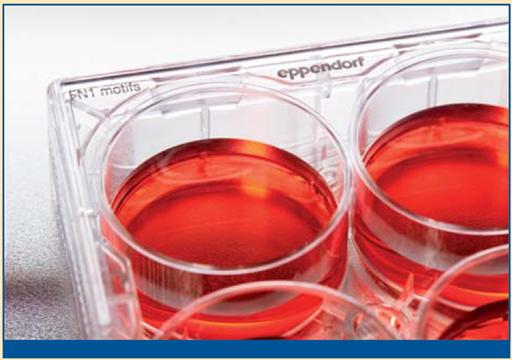 Material para cultivo celular
