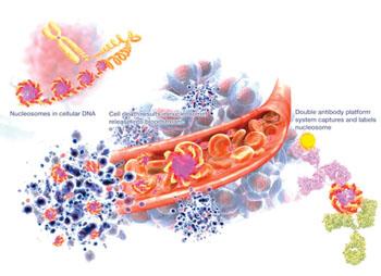 Imagen: Un diagrama del ensayo de biomarcador, NuQ, para el cáncer de próstata (Fotografía cortesía de VolitionRx).