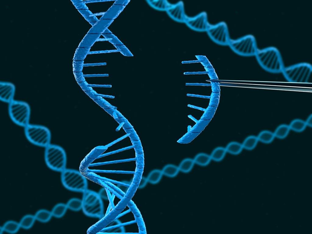 Imagen: Los investigadores han identificado una mutación en la proteína cerebral responsable de una causa genética de trastornos relacionados con la infancia (Fotografía cortesía de iStock).