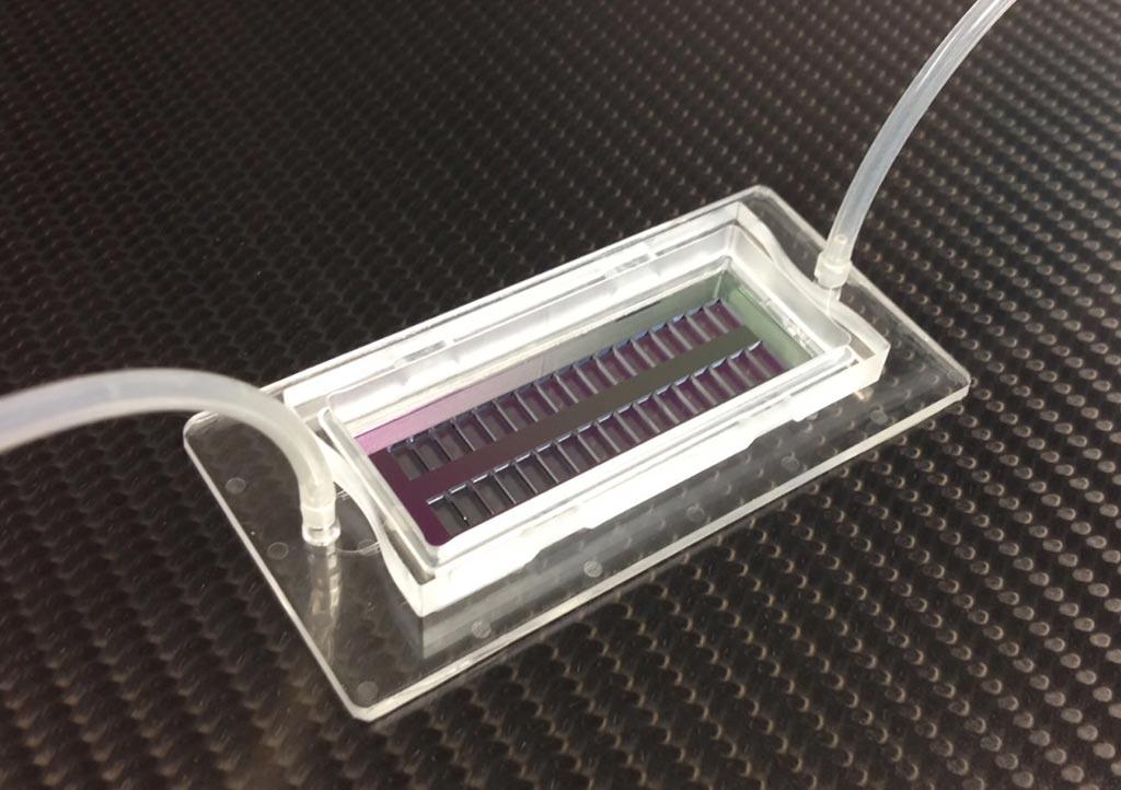 Imagen: El chip con microorificios puede ser poblado con 200.000 células individuales, cada una mantenida en su lugar en agujeros separados (Fotografía cortesía de Fraunhofer IBMT).