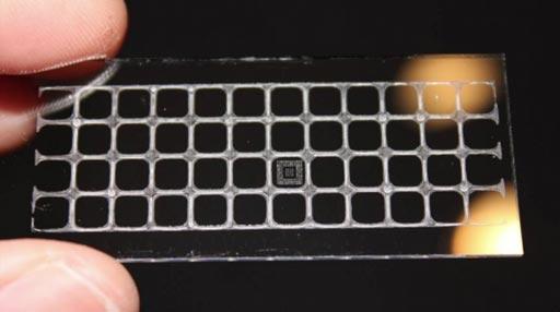 Imagen: Un prototipo del ensayo D4 (Fotografía cortesía de Daniel Joh, Universidad de Duke).