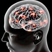 Imagen: Un estudio nuevo sugiere que la obesidad que afecta al hígado podría jugar un papel en el inicio a largo plazo del Alzheimer y la demencia (Fotografía cortesía de Deposit Photos).