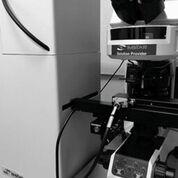 Imagen: El sistema analizador-lector de células, completamente automatizado, Pathfinder, que permite el escaneo multimodal optimizado, la detección y el análisis de células (Fotografía cortesía de IMSTAR).