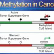 Imagen: Un diagrama del fundamento de la Prueba de Biopsia Líquida Basada en la Metilación, IvyGene, para detectar el cáncer (Fotografía cortesía del Dr. Kevin Conners).