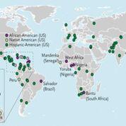 Imagen: Los alelos de riesgo APOL1 G1 y G2 en 111 poblaciones de referencia globales (Fotografía cortesía de la Facultad de Medicina Icahn).