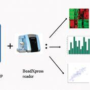 Imagen: Varios tipos de análisis de datos utilizando el módulo de metilación BeadStudio (Fotografía cortesía de Phoebe Lu).