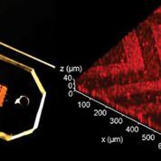 Imagen: El chip microfluídico tridimensional (3D) con nanopatrones en espiga que puede detectar el cáncer con más rapidez (Fotografía cortesía de la Universidad de Kansas).