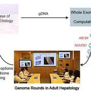 Imagen: El uso de WES en adultos con enfermedad hepática de causa desconocida ilustra el valor clínico potencial de las rondas genómicas en la evaluación individual y la atención médica de los pacientes (Fotografía cortesía de la facultad de medicina de Yale/Journal of Hepatology).