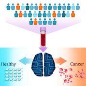 Imagen: Una prueba nueva de biopsia líquida llamada DELFI (evaluación de ADN de fragmentos para una interceptación temprana) utiliza inteligencia artificial para detectar pacientes con cáncer identificando fragmentaciones alteradas de ADN en la sangre (Fotografía cortesía de Carolyn Hruban, Universidad Johns Hopkins).
