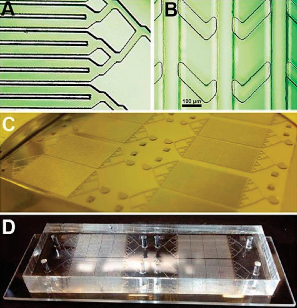 Imagen: (A y B) Fotomicrografías de las capas del dispositivo; (C) el molde listo para fundir y (D) el chip montado en una lámina (Fotografía cortesía de la Universidad Estatal de San Diego).