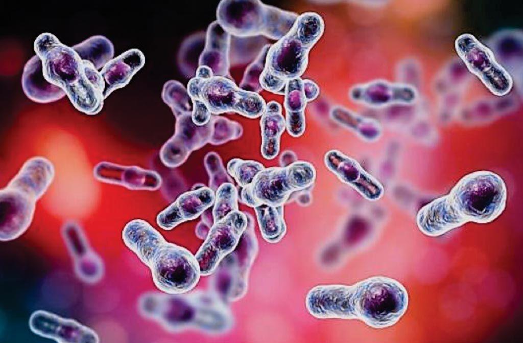 Imagen: Bacilos de Clostridioides difficile en forma de palillos de tambor tal como aparecen en la microscopía electrónica de barrido (Fotografía cortesía de Kateryna Kon, PhD).