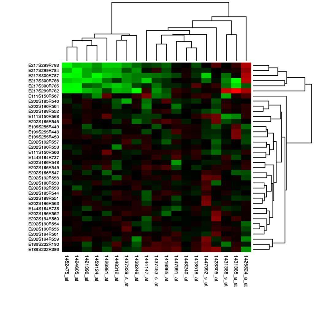 Imagen: Los valores de expresión génica de los experimentos de microarrays se pueden representar como mapas de calor para visualizar el resultado del análisis de datos (Fotografía cortesía de Wikimedia Commons).