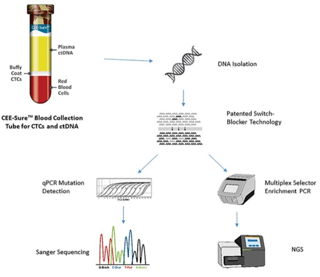 Imagen: Diagrama de la plataforma Selector de Objetivos para el cADN con sensibilidad de detección de copia única para mutaciones de EGFR, BRAF y KRAS clínicamente accionables (Fotografía cortesía de Biocept Inc).