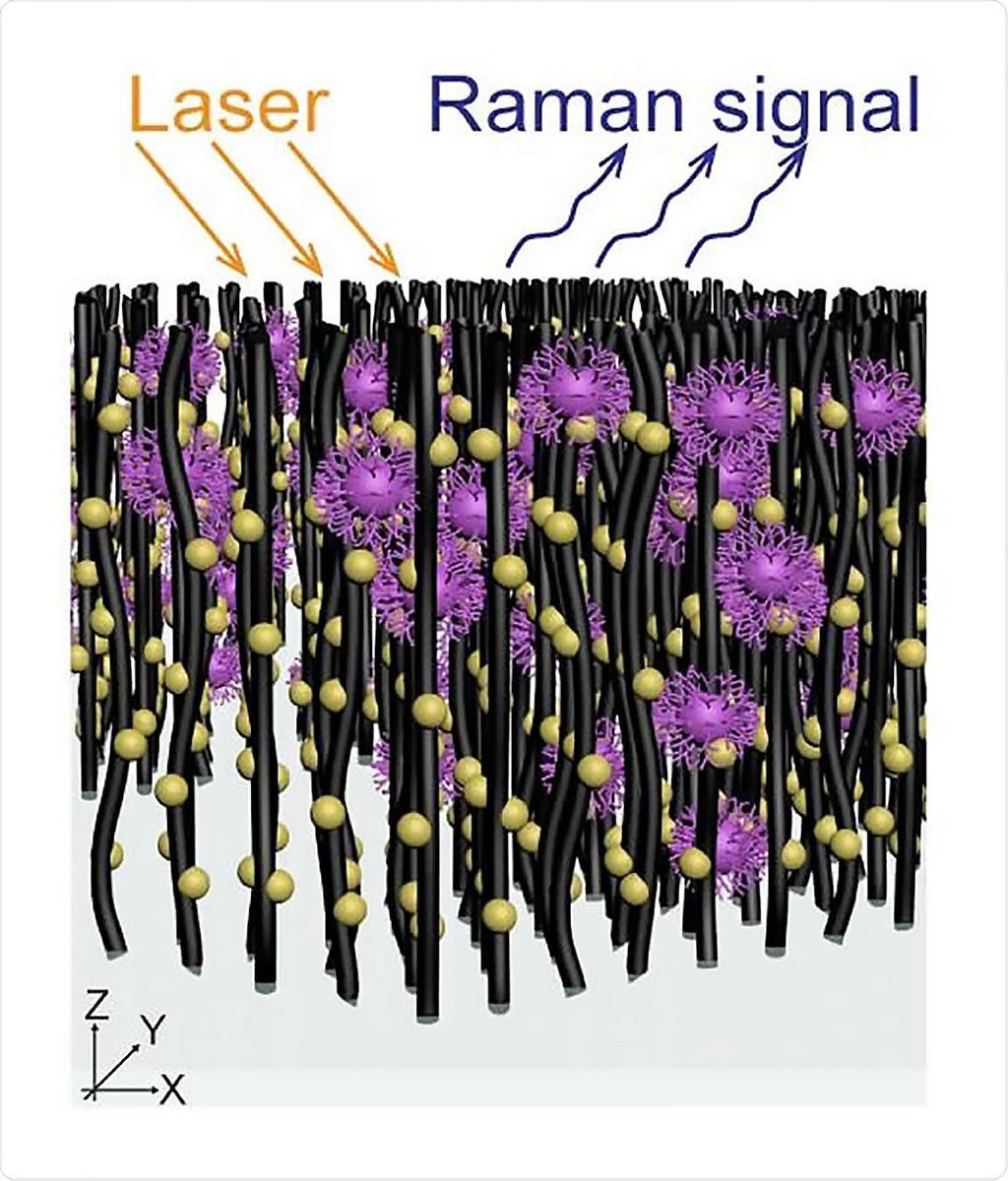Imagen: Esquema de una serie de nanotubos decorados con nanopartículas de oro que capturan moléculas virales para la espectroscopía Raman in situ con el fin de realizar identificación óptica de virus sin necesidad de etiquetas (Fotografía cortesía del profesor Mauricio Terrones)