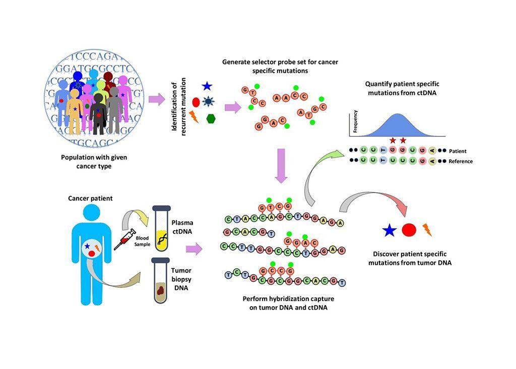 Imagen: Flujo de trabajo de los análisis personalizados de cáncer mediante análisis de ADN tumoral circulante (ADNc) de secuenciación profunda (CAPP-Seq) (Fotografía cortesía de Rashedul Islam Rony, PhD).
