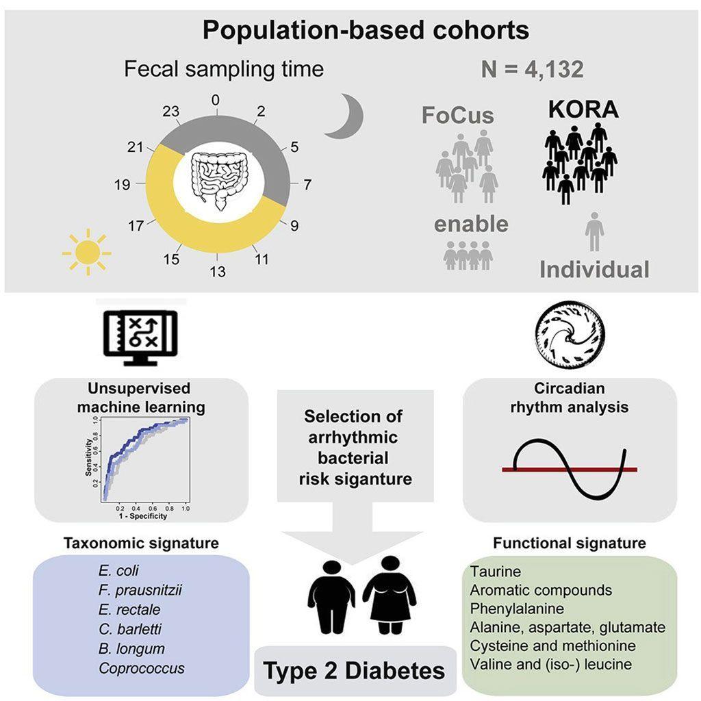 Imagen: Las firmas arrítmicas del microbioma intestinal predicen el riesgo de diabetes tipo 2 (Fotografía cortesía de la Universidad Técnica de Múnich).
