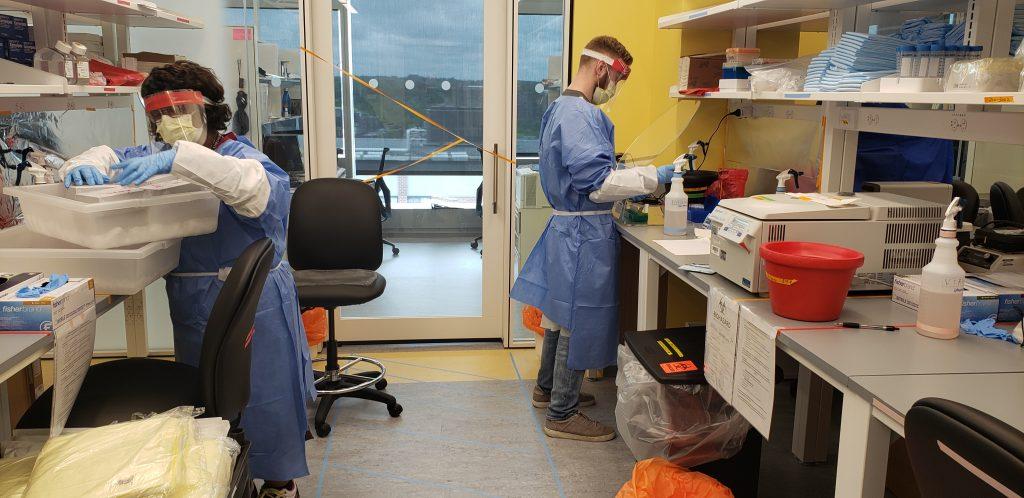 Imagen: Las pruebas de esputo tienen una tasa de detección de COVID-19 significativamente más altas que las pruebas de hisopo orofaríngea (Fotografía cortesía del Hospital Brigham and Women\'s)
