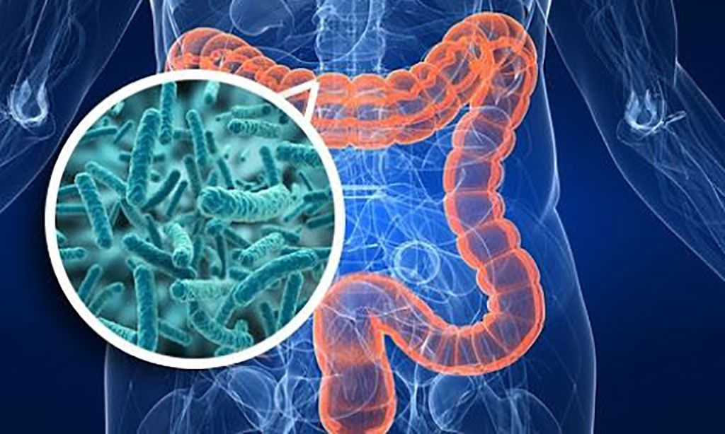 Imagen: Los datos del microbioma intestinal ayudan a la detección de rutina de enfermedades cardiovasculares (Fotografía cortesía de Nishant Mehta PhD).