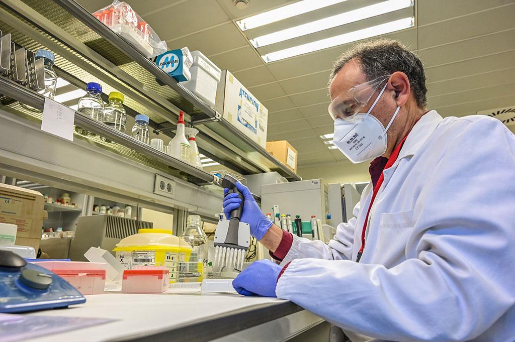 Imagen: Nueva prueba inmunológica tipo ELISA estudia la seroprevalencia contra el SARS-CoV-2 (Fotografía cortesía de la Universidad Politécnica de Valencia)