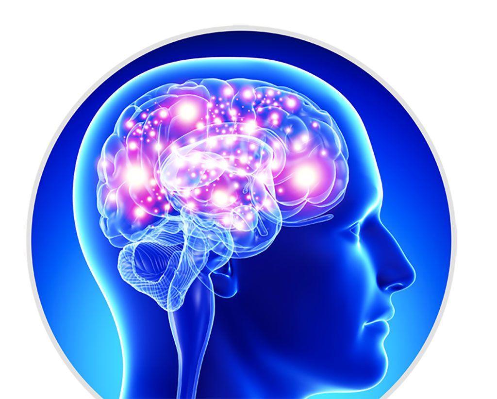 Imagen: Una asociación de ataques epilépticos y no epilépticos y cambios en las proteínas plasmáticas circulantes está relacionada con la neuroinflamación (Fotografía cortesía de Evogen, Inc).